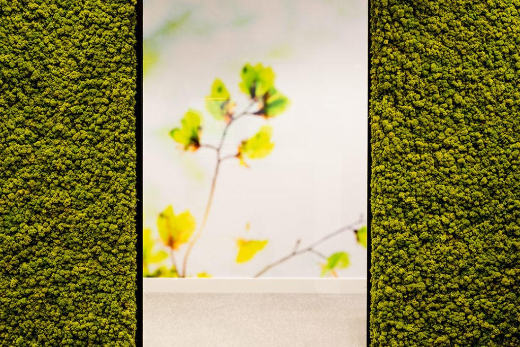 Natuurwand groen geel