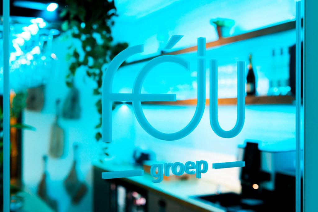 Feju groep logo deur