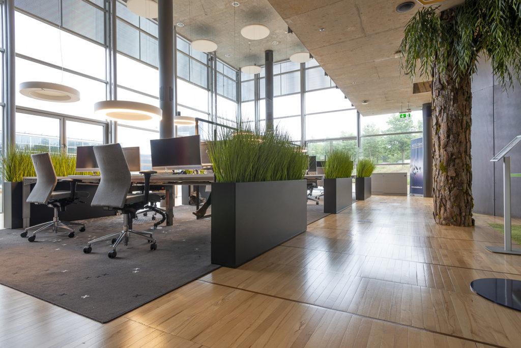 kantoorruimte open glas boom groen